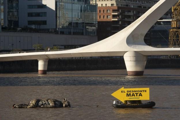 """""""El desmonte MATA"""""""